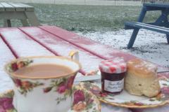 christmas-card-teacup-2012